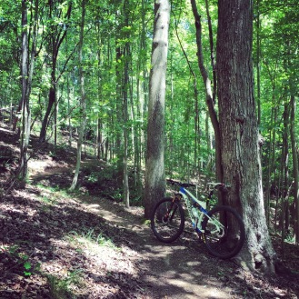 More mountain bike fun, on the Chicopee Woods trails in Gainesville