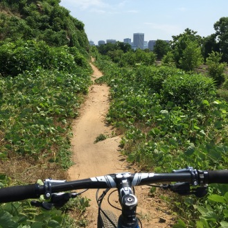 Last section of the ride, looking back into the city from the trails. Such a unique, fun setting!