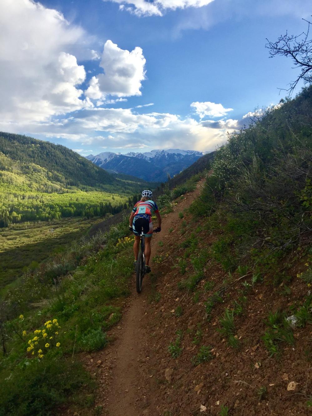 Aspen Training
